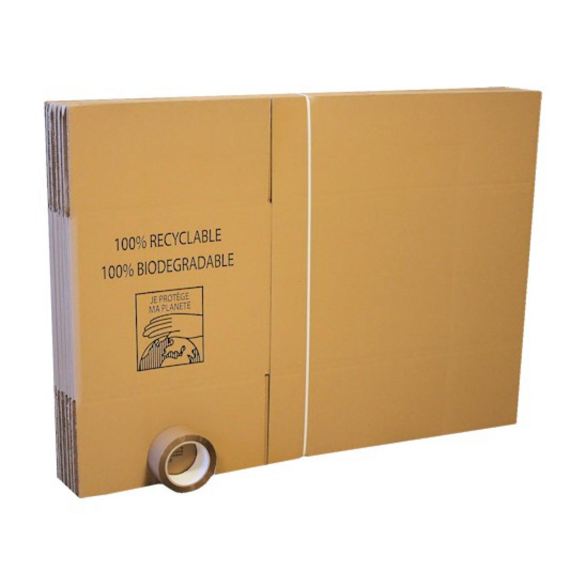 Pack 10 Cartons Standard Adhesif 66m 55x35x30cm